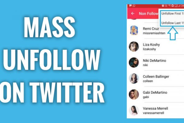 How to Mass Unfollow People on Twitter App