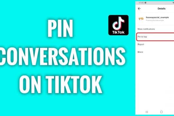 How to pin important conversations on TikTok