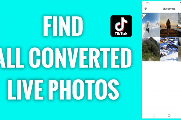 How to find all your converted live photos on TikTok