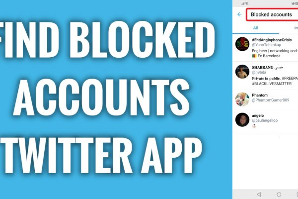 How to find blocked accounts on Twitter app